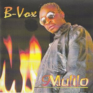 B Vox 歌手頭像