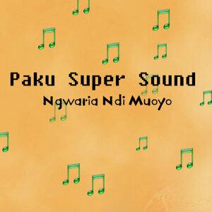 Paku Super Sound 歌手頭像