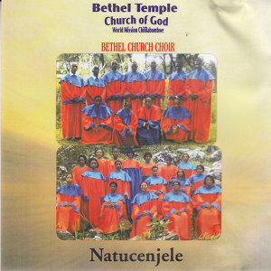 Bethel Temple Church Of God World Mission Chililabombwe Bethel Church Choir 歌手頭像