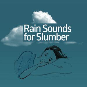 Rain Sounds & Nature Sounds, Rainfall, Thunderstorms 歌手頭像