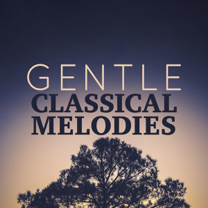 Romantic Music Ensemble, Sleep Baby Sleep & Classical Lullabies, The Einstein Classical Music Collection for Baby 歌手頭像