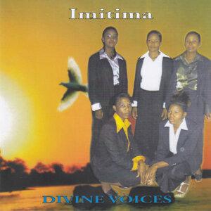 Divine Voices 歌手頭像