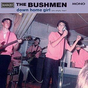 The Bushmen
