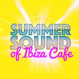 Future Sound of Ibiza, Sexy Summer Café Ibiza 2011 歌手頭像