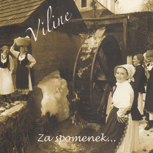 Viline 歌手頭像