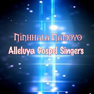 Alleluya Gospel Singers 歌手頭像