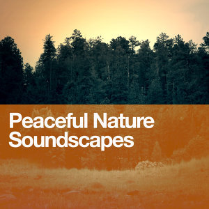 Sounds of Nature!, Soundscapes!, Spa 歌手頭像