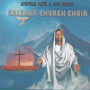 Apostolic Faith & Acts Church Calvary Church Choir 歌手頭像