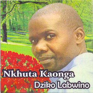 Dziko Labwino 歌手頭像