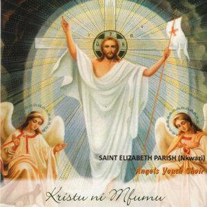 Saint Elizabeth Parish Nkwazi Angels Youth Choir 歌手頭像