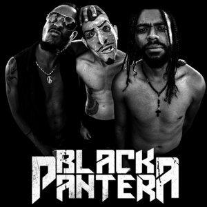 Project Black Pantera 歌手頭像