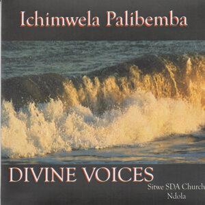 Divine Voices Sitwe SDA Church Ndola 歌手頭像