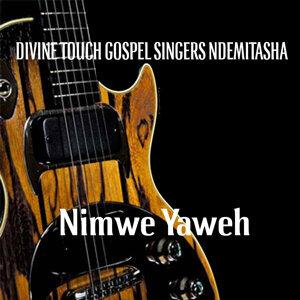 Divine Touch Gospel Singers Ndemitasha 歌手頭像
