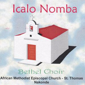 Bethel Choir African Methodist Episcopal Church St Thomas Nakonde 歌手頭像