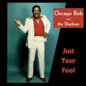 Chicago Bob and The Shadows 歌手頭像