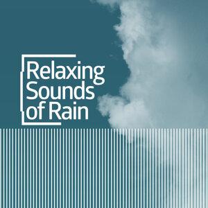 Rain for Deep Sleep, Rain Sounds, Relaxing Sounds of Nature 歌手頭像