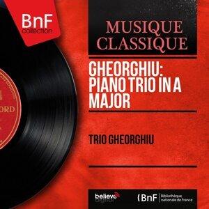 Trio Gheorghiu, Valentin Gheorghiu, Ștefan Gheorghiu, Radu Aldulescu 歌手頭像