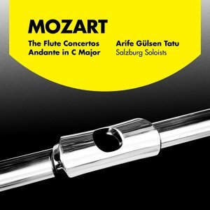 Arife Gülsen Tatu, The Salzburg Mozart Soloists 歌手頭像