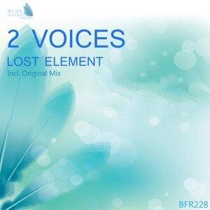 2 Voices 歌手頭像