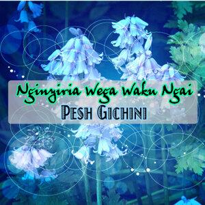 Pesh Gichini 歌手頭像