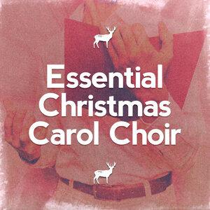 Christmas Choir, The Christmas Carol Players, Trad. Christmas Carol 歌手頭像