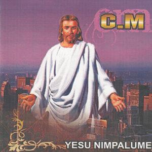 C.M 歌手頭像