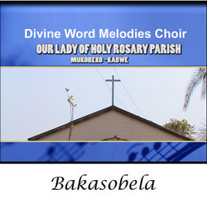 Divine Word Melodies Choir Our Lady Of Holy Rosary Parish Mukobeko Kabwe 歌手頭像