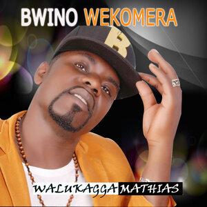 Walukagga Mathias 歌手頭像