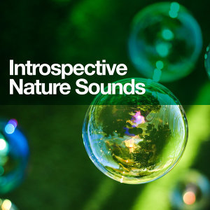 Soothing Sounds, Sound Library XL, Sounds of Nature 歌手頭像