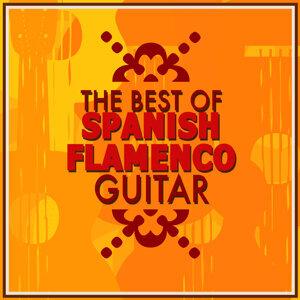 Flamenco Music Musica Flamenca Chill Out, Música de España 歌手頭像