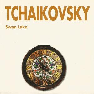 Radio Bratislav Symphony Orchestra 歌手頭像