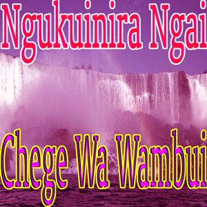 Chege Wa Wambui 歌手頭像