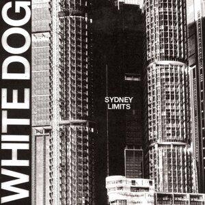 White Dog 歌手頭像