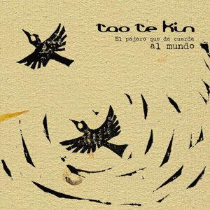 Tao Te Kin 歌手頭像