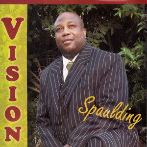 Mr Spaulding 歌手頭像