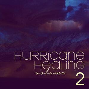 Hurricane Healing 歌手頭像