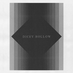 Dicey Hollow 歌手頭像