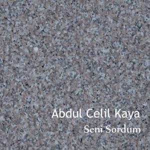 Abdul Celil Kaya 歌手頭像