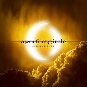 A Perfect Circle (完美集團)