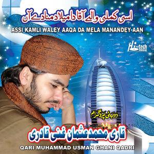 Qari Muhammad Usman Ghani Qadri 歌手頭像