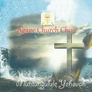 Agape Church Choir 歌手頭像