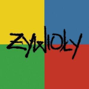 Zywioly 歌手頭像