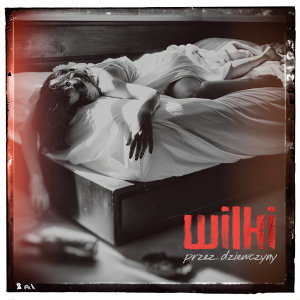 Wilki 歌手頭像