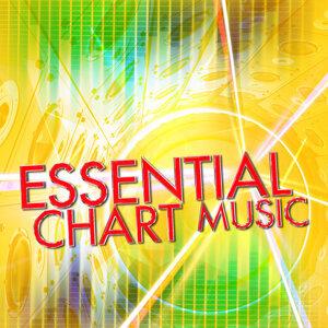 Top 40 DJ's, Dance Hits 2015, Top 40 歌手頭像