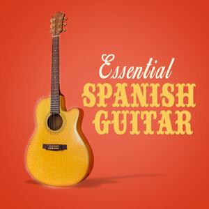 Acoustic Guitar, Guitar Songs Music, Instrumental Guitar Music 歌手頭像