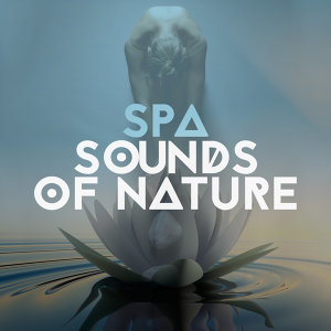 The Calming Sounds of Nature, Serenity Spa Music Relaxation, Sonidos de la naturaleza Relajacion 歌手頭像