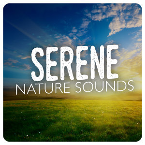 Nature Sound Collection, Nature Sounds 歌手頭像