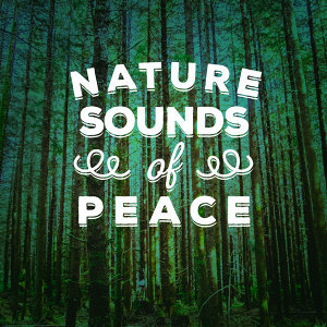 The Ultimate Sounds of Nature, Best Nature Sounds for Relaxing, Nature Sounds Relaxing 歌手頭像