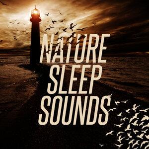Nature Sound Series, Sleep Sounds of Nature, Sonidos de la naturaleza Relajacion 歌手頭像