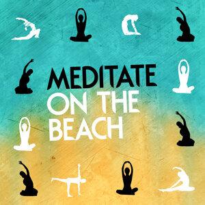 The New Age Meditators, Ayurveda, Sleep Music on the Beach 歌手頭像